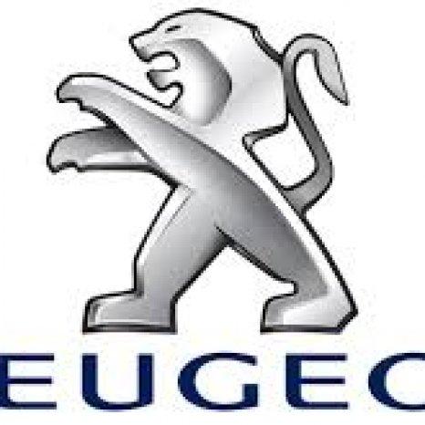 Piese din dezmembrari Peugeot 307 1.9 diesel 2001