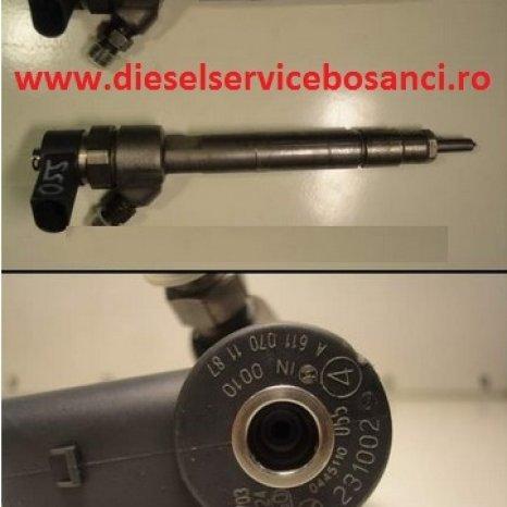 Injector Bosch 0445110055 Mercedes E-class
